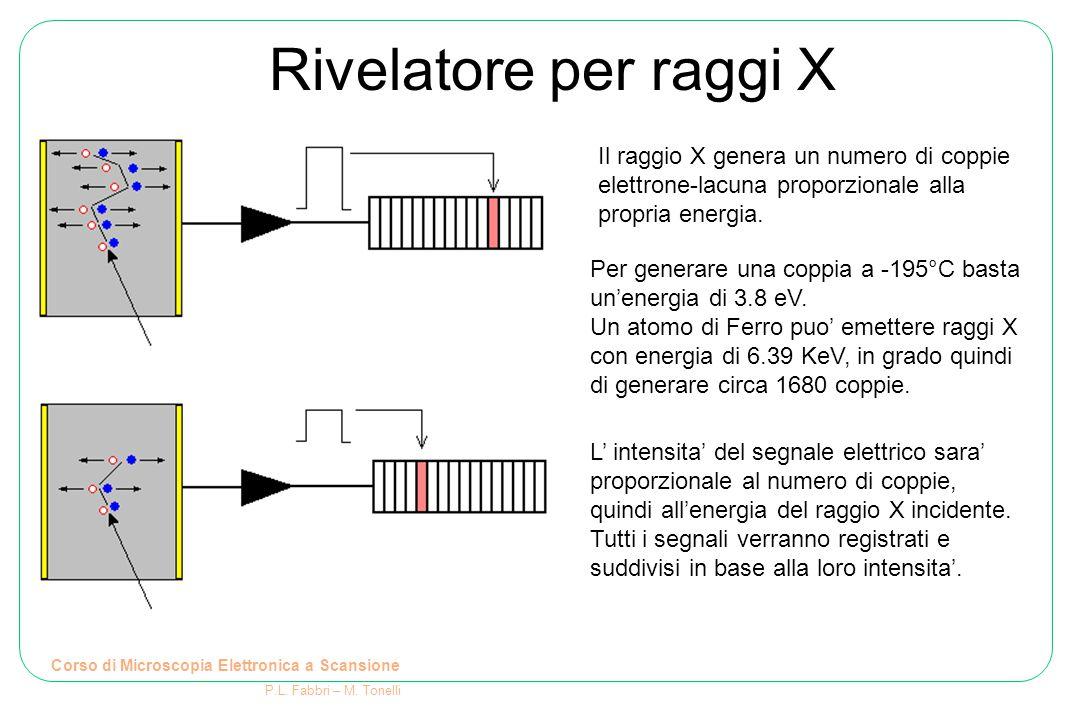 Rivelatore per raggi X Corso di Microscopia Elettronica a Scansione P.L. Fabbri – M. Tonelli Per generare una coppia a -195°C basta un'energia di 3.8