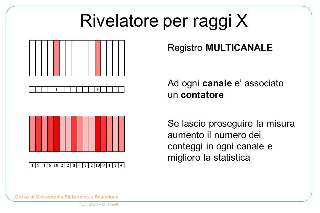 Rivelatore per raggi X Corso di Microscopia Elettronica a Scansione P.L.