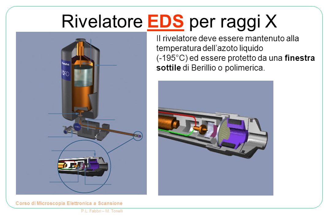 Rivelatore EDS per raggi X Corso di Microscopia Elettronica a Scansione P.L. Fabbri – M. Tonelli Il rivelatore deve essere mantenuto alla temperatura