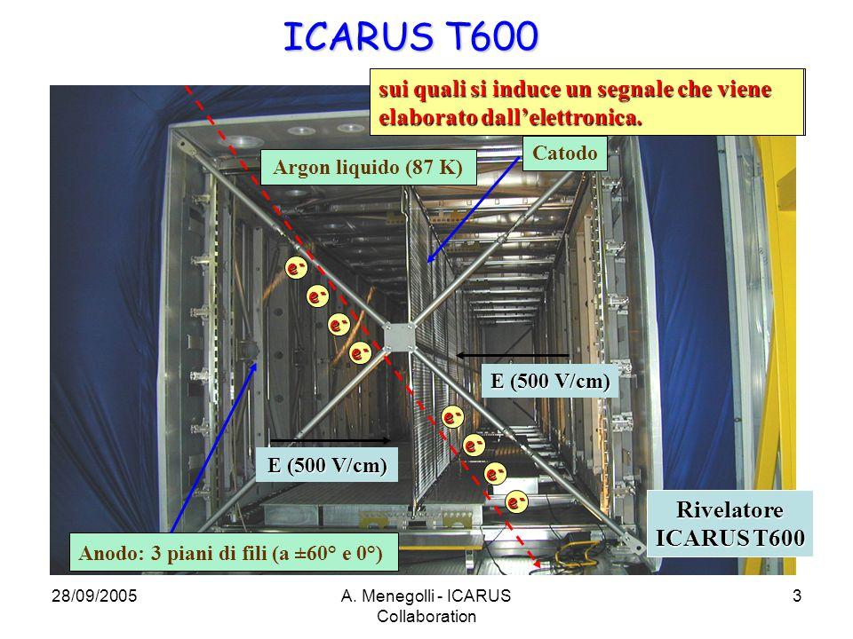 28/09/2005A. Menegolli - ICARUS Collaboration 3 ICARUS T600 Argon liquido (87 K) Catodo Anodo: 3 piani di fili (a ±60° e 0°) E (500 V/cm) Rivelatore I