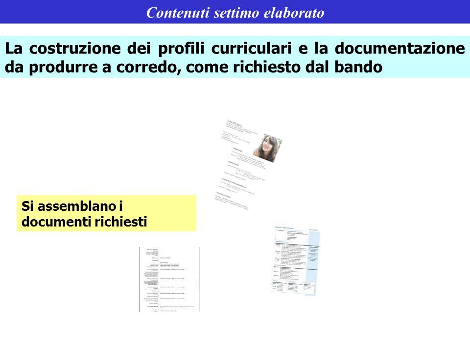 Contenuti settimo elaborato La costruzione dei profili curriculari e la documentazione da produrre a corredo, come richiesto dal bando Si assemblano i