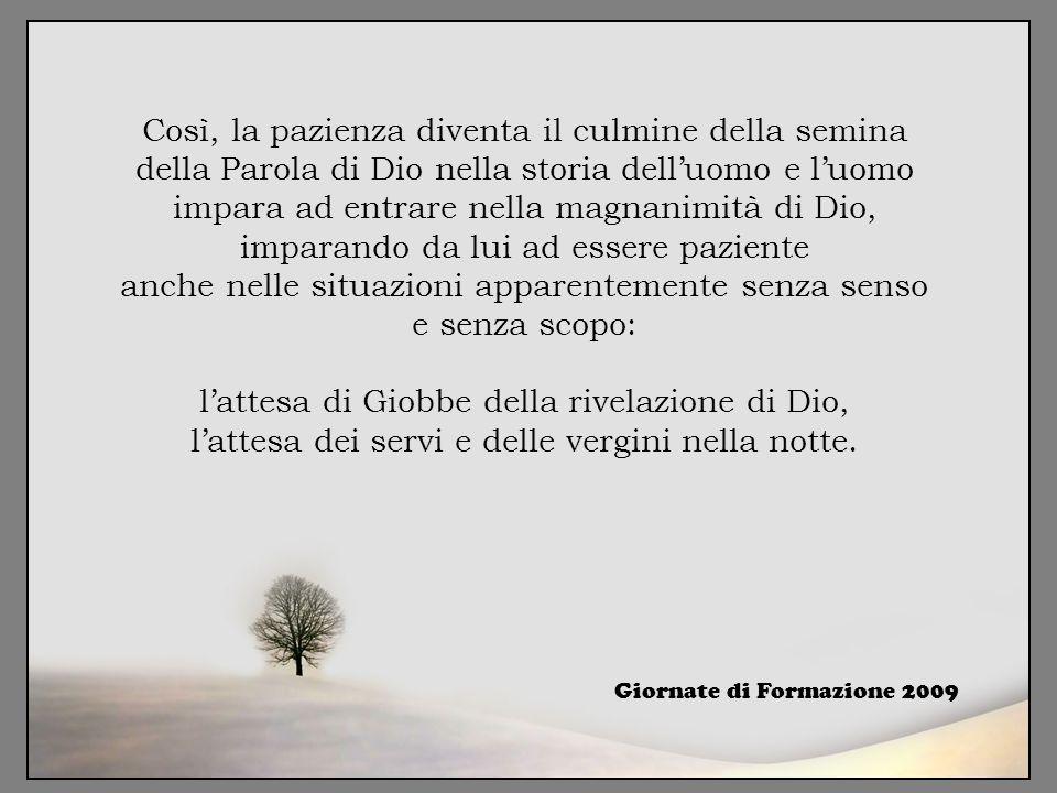 Così, la pazienza diventa il culmine della semina della Parola di Dio nella storia dell'uomo e l'uomo impara ad entrare nella magnanimità di Dio, impa