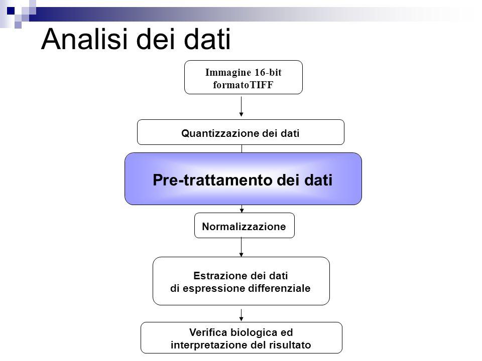 Analisi dei dati Quantizzazione dei dati Pre-trattamento dei dati Immagine 16-bit formatoTIFF Normalizzazione Pre-trattamento dei dati Verifica biolog