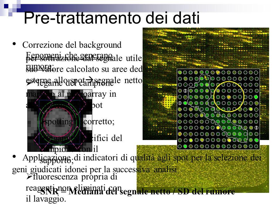 """per sottrazione dal segnale utile del suo valore calcolato su aree dedicate esterne allo spot  segnale netto Fenomeni che generano rumore:  """"legame"""