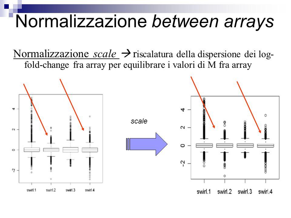 Normalizzazione scale  r iscalatura della dispersione dei log- fold-change fra array per equilibrare i valori di M fra array Normalizzazione between