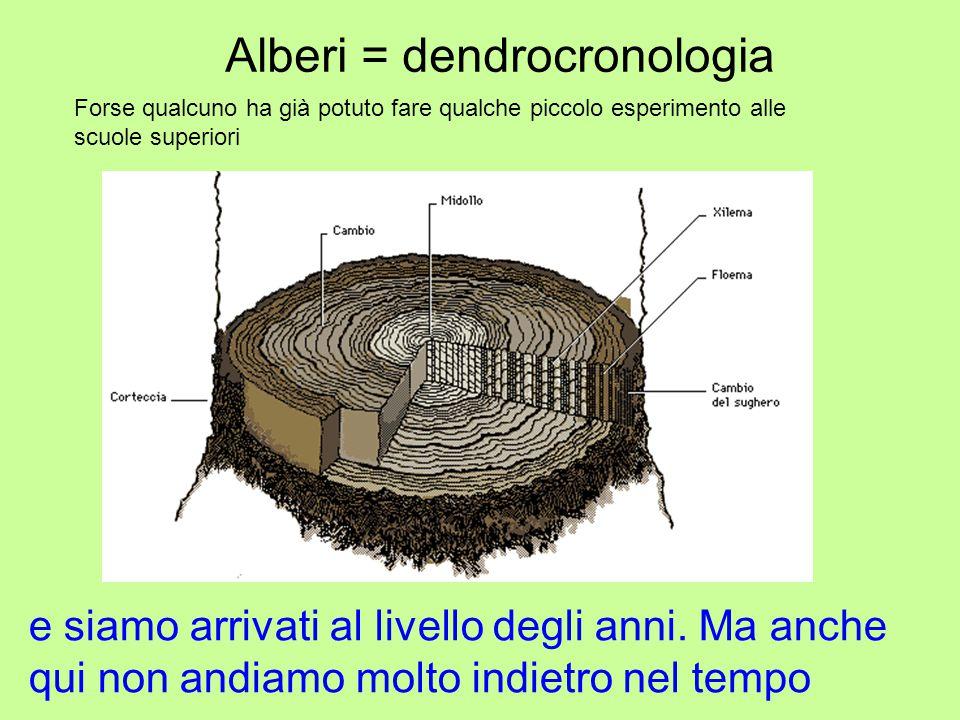 Alberi = dendrocronologia Forse qualcuno ha già potuto fare qualche piccolo esperimento alle scuole superiori e siamo arrivati al livello degli anni.