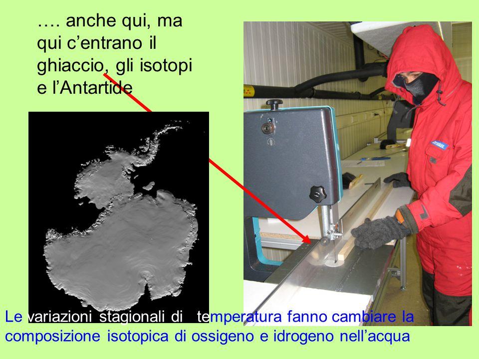 …. anche qui, ma qui c'entrano il ghiaccio, gli isotopi e l'Antartide Le variazioni stagionali di temperatura fanno cambiare la composizione isotopica