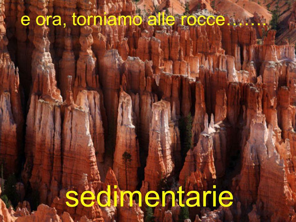 e ora, torniamo alle rocce……. sedimentarie