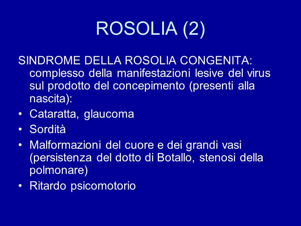 ROSOLIA (2) SINDROME DELLA ROSOLIA CONGENITA: complesso della manifestazioni lesive del virus sul prodotto del concepimento (presenti alla nascita): C