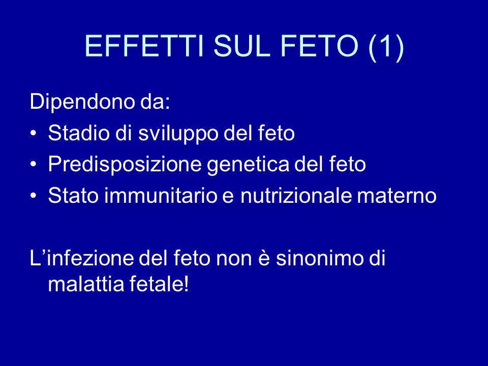 EFFETTI SUL FETO (1) Dipendono da: Stadio di sviluppo del feto Predisposizione genetica del feto Stato immunitario e nutrizionale materno L'infezione