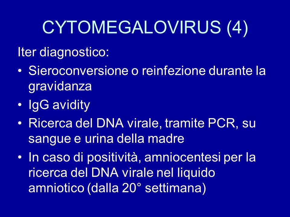 CYTOMEGALOVIRUS (5) In caso di positività della ricerca del DNA virale nel liquido amniotico, si ha la certezza che l'infezione è stata trasmessa al feto, ma non necessariamente la trasmissione dell'infezione è indicativa di fetopatia!