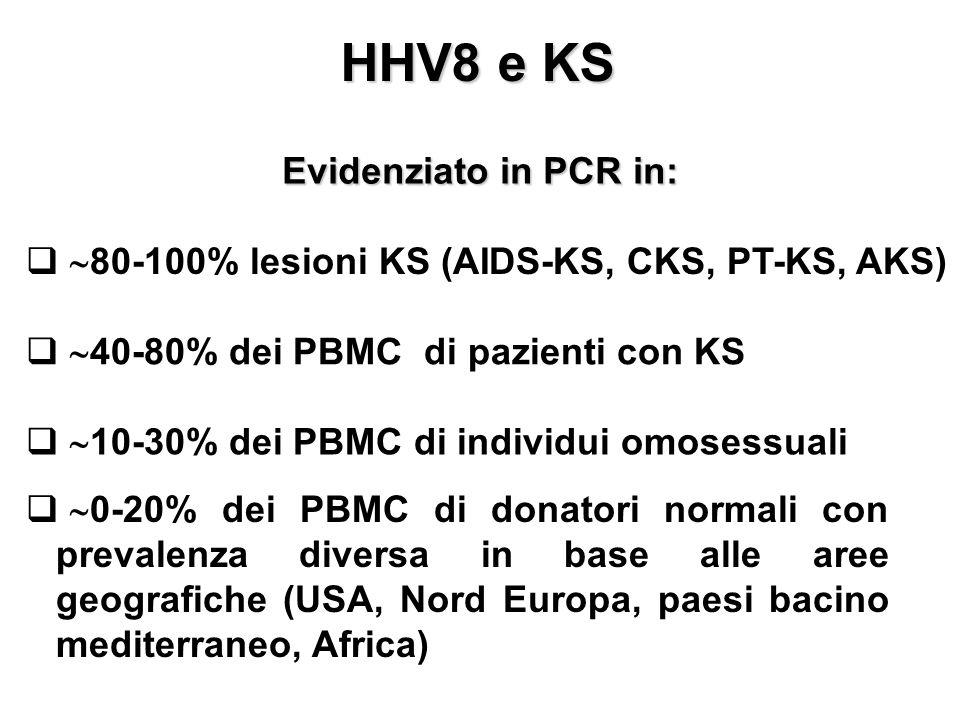 HHV8 e KS   80-100% lesioni KS (AIDS-KS, CKS, PT-KS, AKS)   40-80% dei PBMC di pazienti con KS   10-30% dei PBMC di individui omosessuali   0-