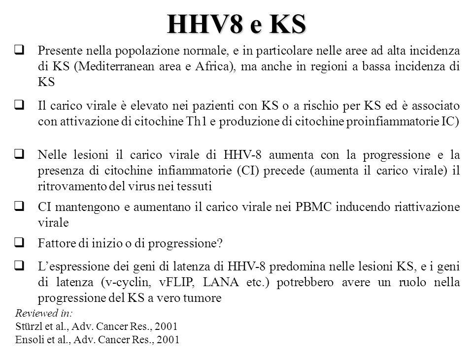 HHV8 e KS  Presente nella popolazione normale, e in particolare nelle aree ad alta incidenza di KS (Mediterranean area e Africa), ma anche in regioni