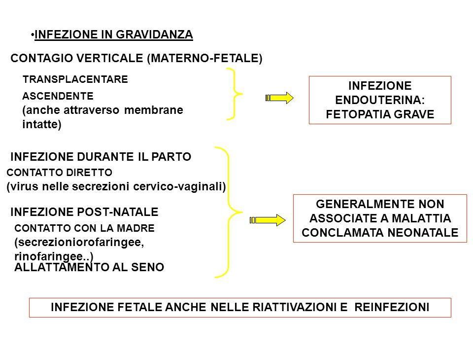 INFEZIONE IN GRAVIDANZA CONTAGIO VERTICALE (MATERNO-FETALE) TRANSPLACENTARE ASCENDENTE (anche attraverso membrane intatte) INFEZIONE DURANTE IL PARTO