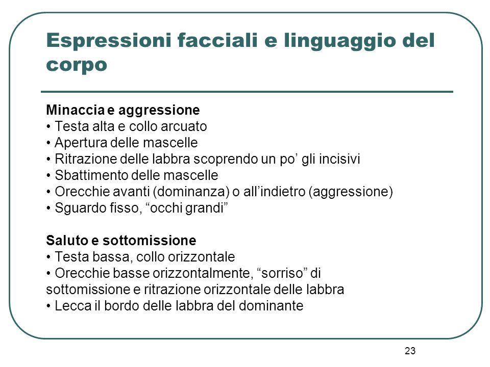 23 Espressioni facciali e linguaggio del corpo Minaccia e aggressione Testa alta e collo arcuato Apertura delle mascelle Ritrazione delle labbra scopr