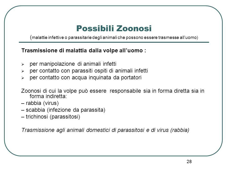 28 Possibili Zoonosi ( malattie infettive o parassitarie degli animali che possono essere trasmesse all'uomo) Trasmissione di malattia dalla volpe all