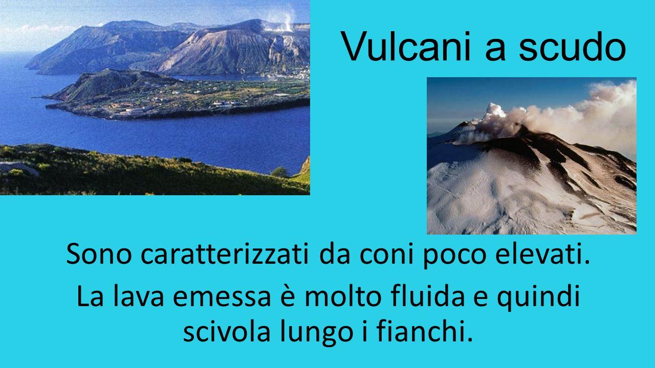 Vulcani a scudo Sono caratterizzati da coni poco elevati.
