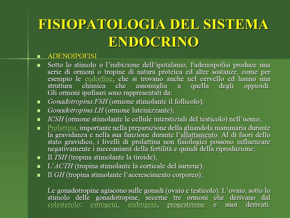 ADENOIPOFISI ADENOIPOFISI Sotto lo stimolo o l'inibizione dell'ipotalamo, l'adenoipofisi produce una serie di ormoni o tropine di natura proteica ed a