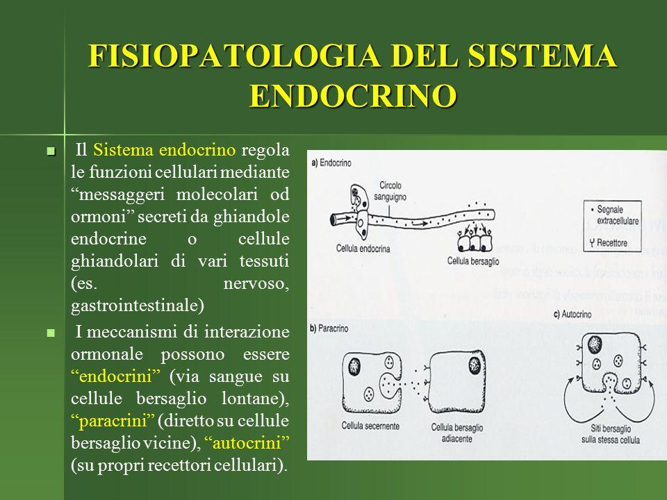 """FISIOPATOLOGIA DEL SISTEMA ENDOCRINO Il Sistema endocrino regola le funzioni cellulari mediante """"messaggeri molecolari od ormoni"""" secreti da ghiandole"""