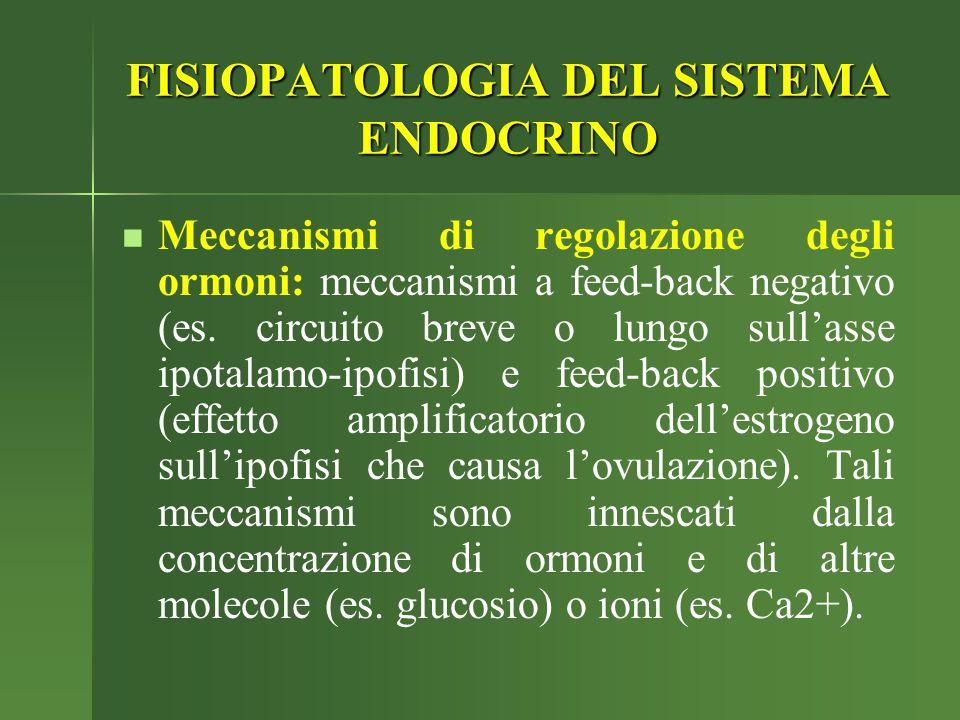 Meccanismi di regolazione degli ormoni: meccanismi a feed-back negativo (es. circuito breve o lungo sull'asse ipotalamo-ipofisi) e feed-back positivo