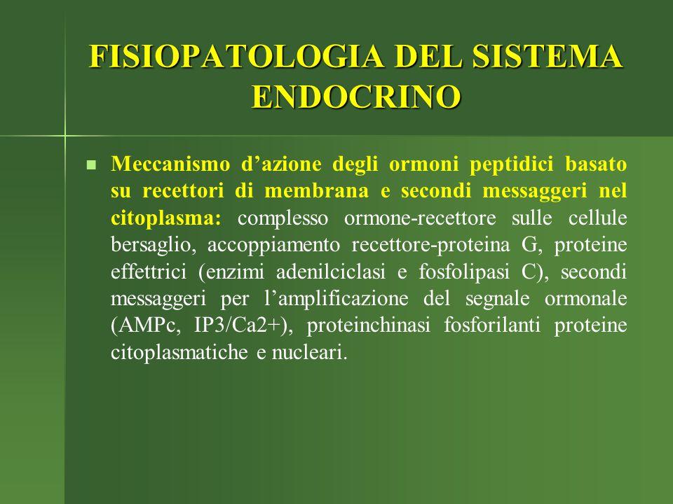 FISIOPATOLOGIA DEL SISTEMA ENDOCRINO Meccanismo d'azione degli ormoni peptidici basato su recettori di membrana e secondi messaggeri nel citoplasma: c