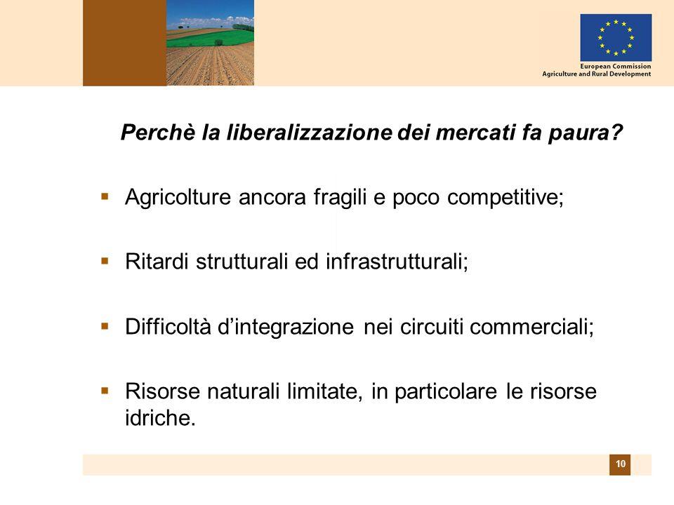 10 Perchè la liberalizzazione dei mercati fa paura?  Agricolture ancora fragili e poco competitive;  Ritardi strutturali ed infrastrutturali;  Diff