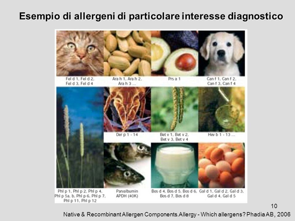 10 Esempio di allergeni di particolare interesse diagnostico Native & Recombinant Allergen Components.Allergy - Which allergens.