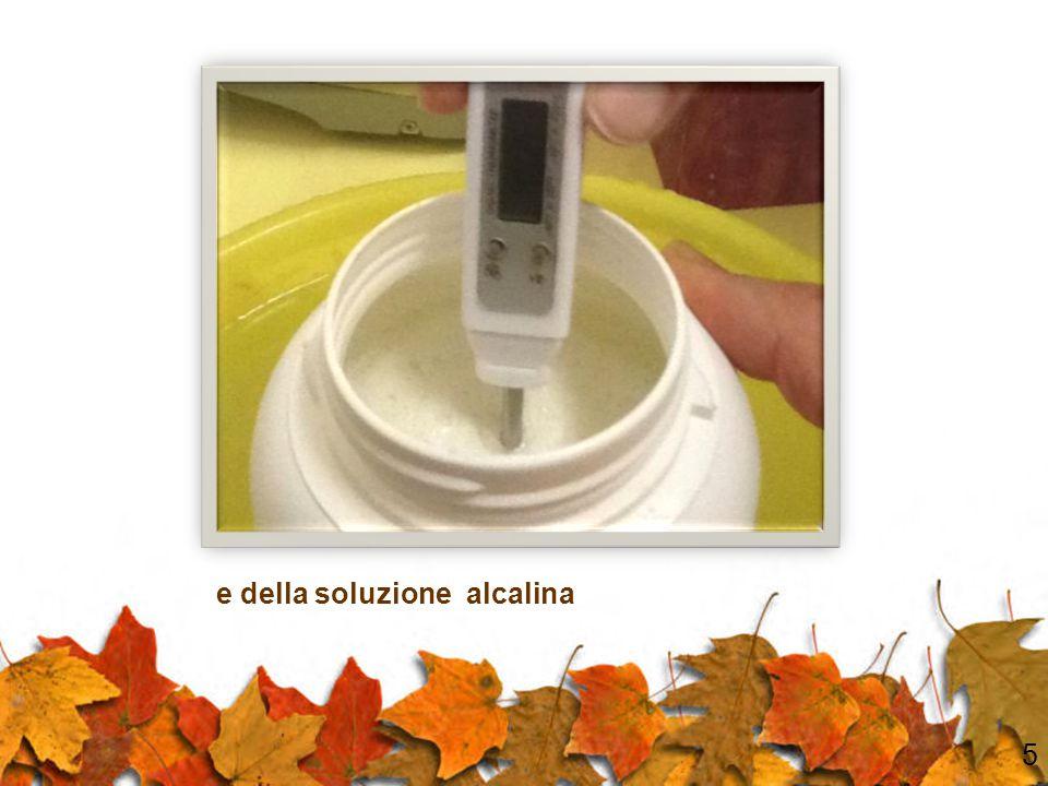Si controlla la temperatura dell'olio di oliva 4