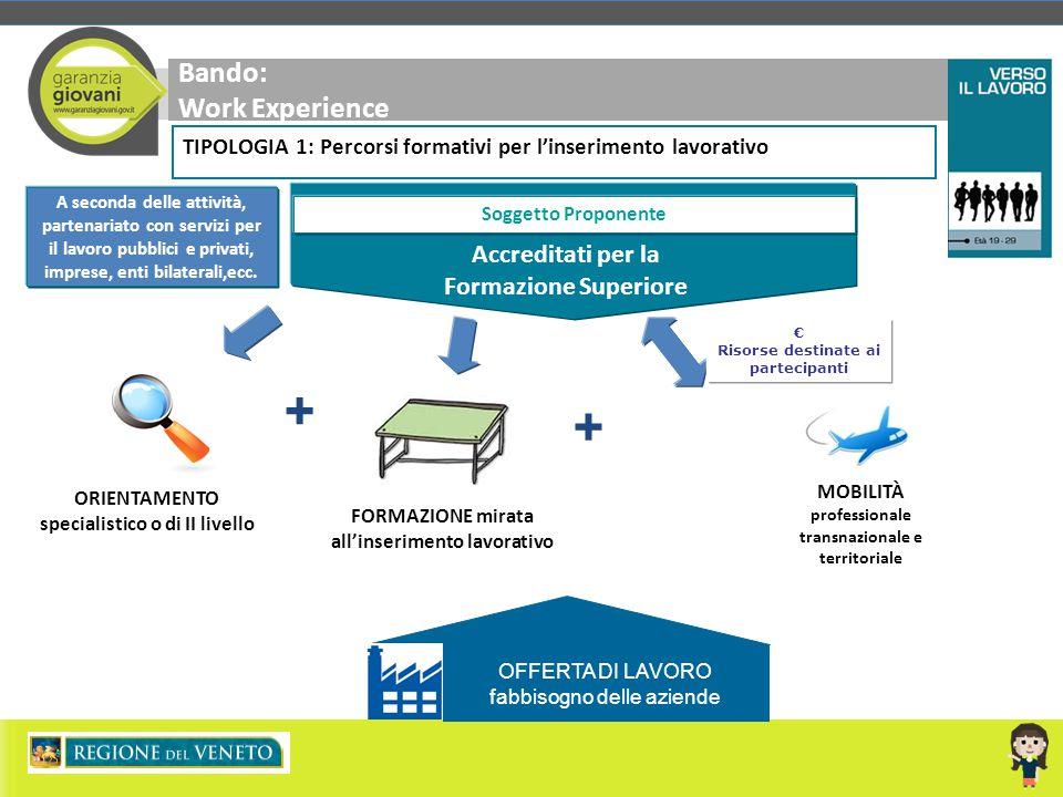 Bando: Work Experience A seconda delle attività, partenariato con servizi per il lavoro pubblici e privati, imprese, enti bilaterali,ecc. Soggetto Pro