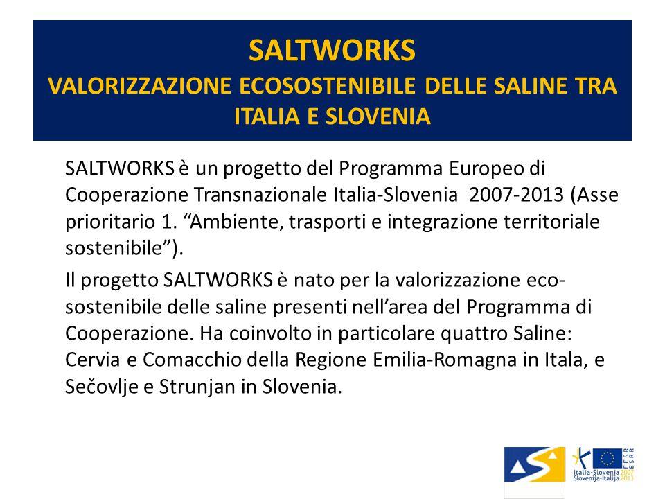 SALTWORKS VALORIZZAZIONE ECOSOSTENIBILE DELLE SALINE TRA ITALIA E SLOVENIA SALTWORKS è un progetto del Programma Europeo di Cooperazione Transnazionale Italia-Slovenia 2007-2013 (Asse prioritario 1.