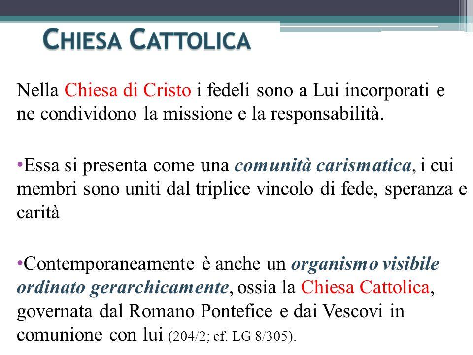 Nella Chiesa di Cristo i fedeli sono a Lui incorporati e ne condividono la missione e la responsabilità.