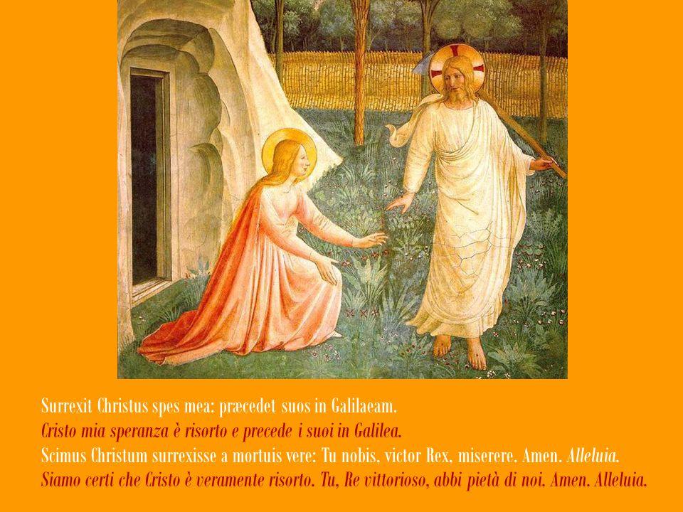Sepulcrum Christi viventis, et gloriam vidi resurgentis, La tomba del Cristo vivente, la gloria del risorto; angelicos testes, sudarium et vestes.