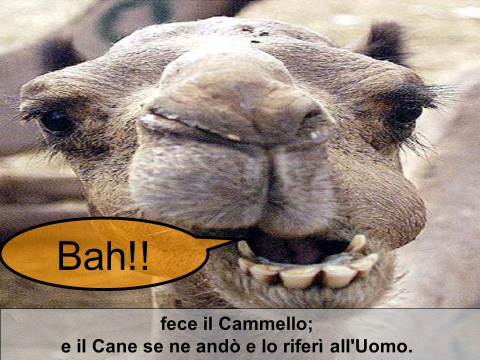 fece il Cammello; e il Cane se ne andò e lo riferì all'Uomo. Bah!!