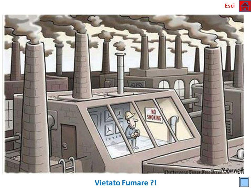 Esci Un Altro Effetto della Deforestazione !!!