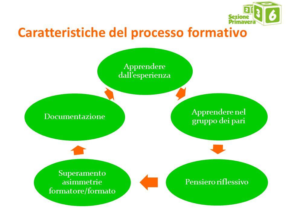 Caratteristiche del processo formativo Apprendere dall'esperienza Apprendere nel gruppo dei pari Pensiero riflessivo Superamento asimmetrie formatore/formato Documentazione