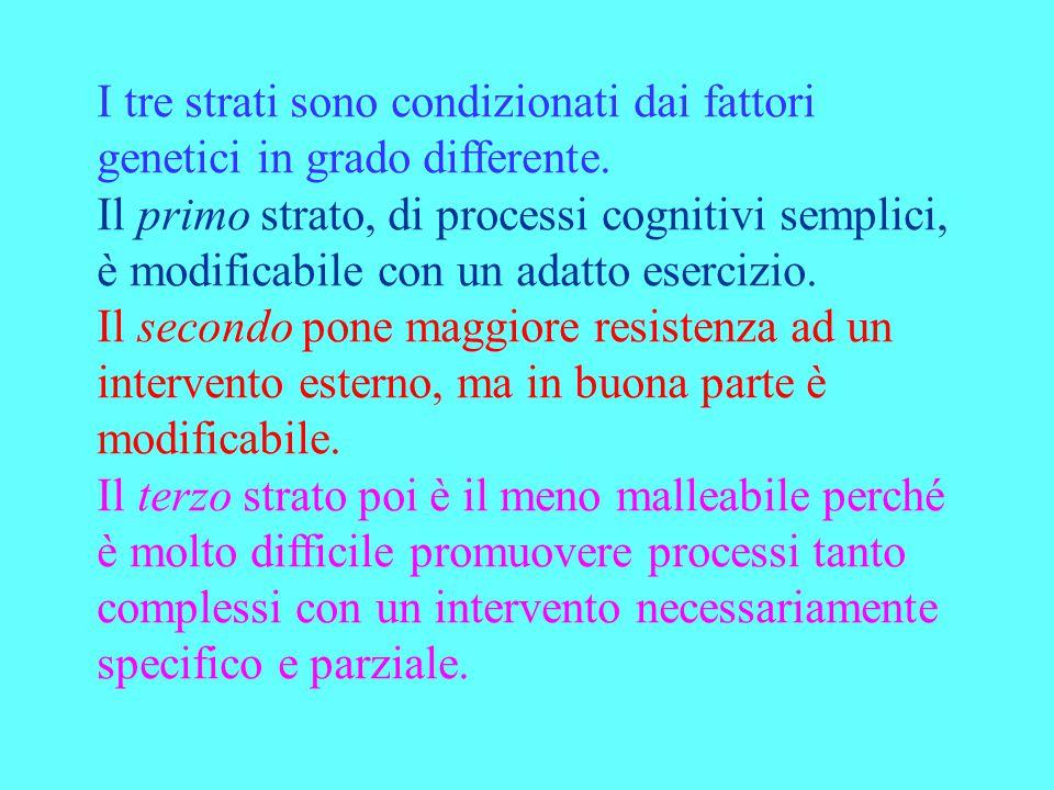 I tre strati sono condizionati dai fattori genetici in grado differente. Il primo strato, di processi cognitivi semplici, è modificabile con un adatto