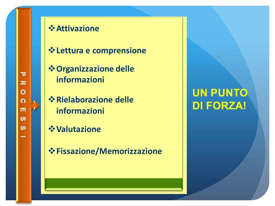  Attivazione  Lettura e comprensione  Organizzazione delle informazioni  Rielaborazione delle informazioni  Valutazione  Fissazione/Memorizzazio