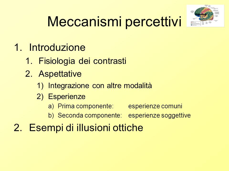 Meccanismi percettivi 1.Introduzione 1.Fisiologia dei contrasti 2.Aspettative 1)Integrazione con altre modalità 2)Esperienze a)Prima componente: esperienze comuni b)Seconda componente: esperienze soggettive 2.Esempi di illusioni ottiche