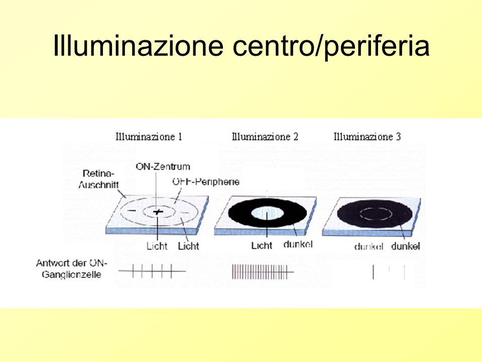 Illuminazione centro/periferia