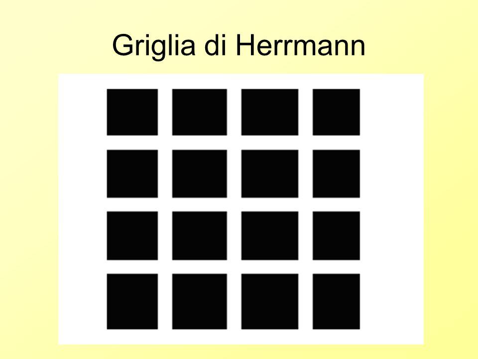 Griglia di Herrmann