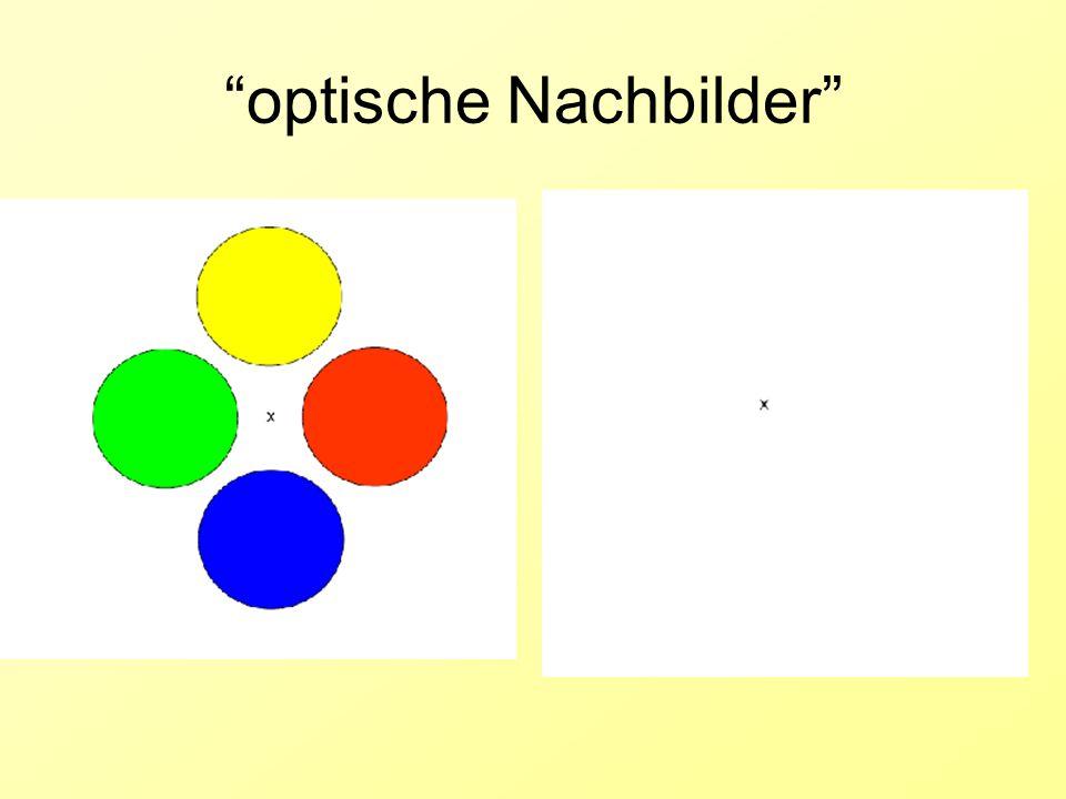 optische Nachbilder