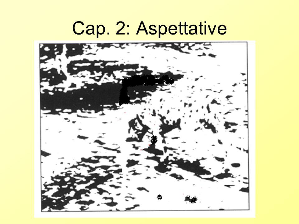 Cap. 2: Aspettative