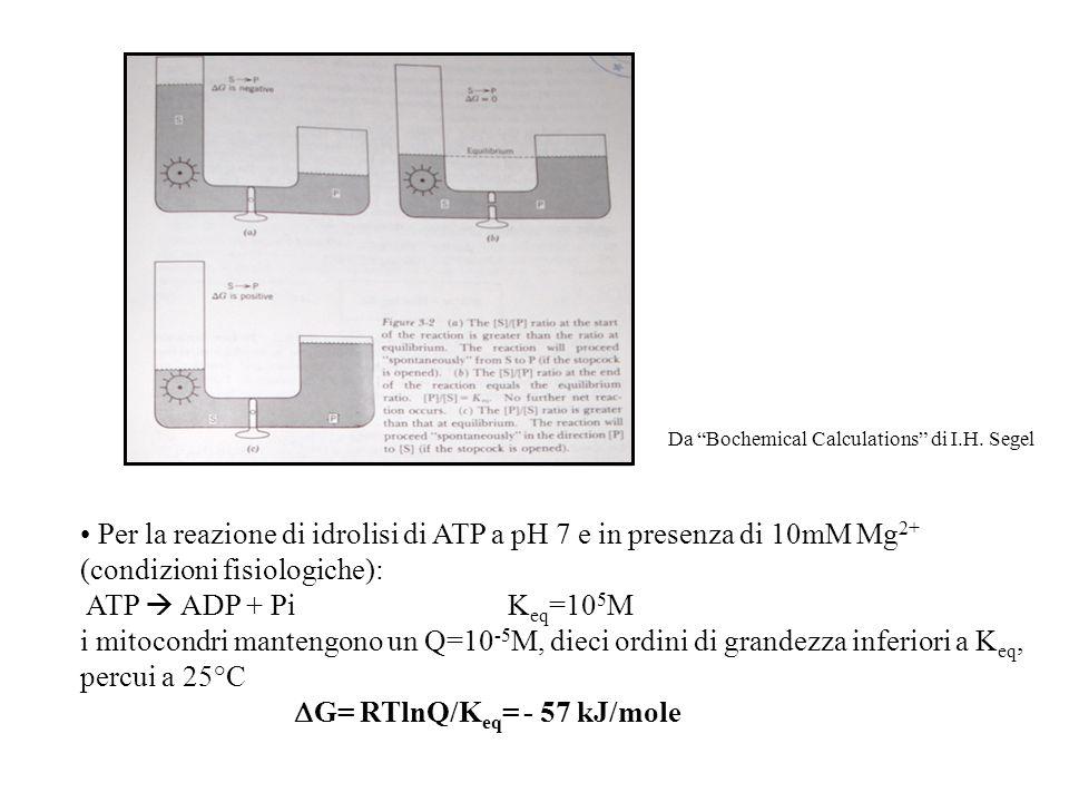 Per la reazione di idrolisi di ATP a pH 7 e in presenza di 10mM Mg 2+ (condizioni fisiologiche): ATP  ADP + PiK eq =10 5 M i mitocondri mantengono un Q=10 -5 M, dieci ordini di grandezza inferiori a K eq, percui a 25°C  G= RTlnQ/K eq = - 57 kJ/mole Da Bochemical Calculations di I.H.