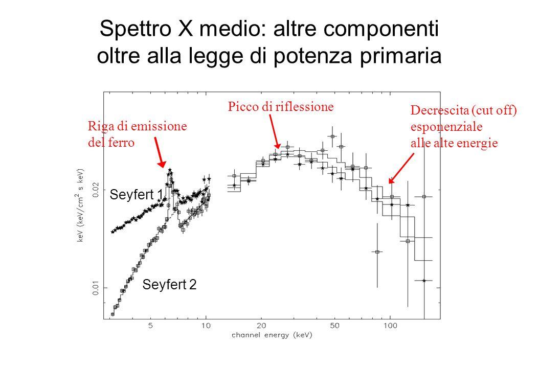 Spettro X medio: altre componenti oltre alla legge di potenza primaria Seyfert 1 Seyfert 2 Riga di emissione del ferro Decrescita (cut off) esponenziale alle alte energie Picco di riflessione