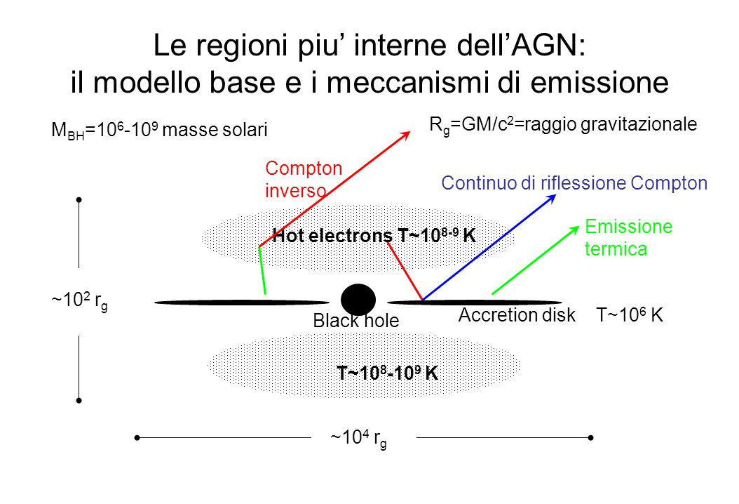 Le regioni piu' interne dell'AGN: il modello base e i meccanismi di emissione Black hole Accretion disk T~10 6 K Hot electrons T~10 8-9 K R g =GM/c 2 =raggio gravitazionale M BH =10 6 -10 9 masse solari ~10 4 r g ~10 2 r g T~10 8 -10 9 K Emissione termica Continuo di riflessione Compton Compton inverso