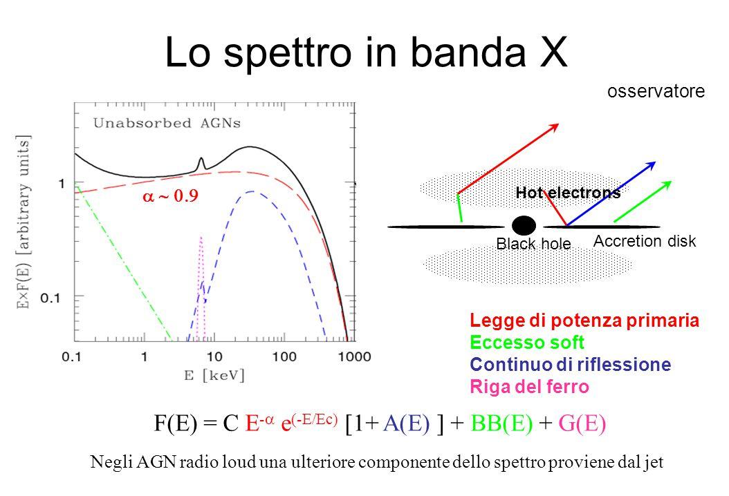 Lo spettro in banda X Black hole Accretion disk Hot electrons osservatore Legge di potenza primaria Eccesso soft Continuo di riflessione Riga del ferr