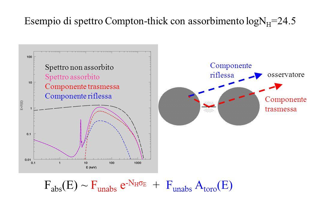 F abs (E) ~ F unabs e -N H σ E + F unabs A toro (E) Spettro non assorbito Spettro assorbito Componente trasmessa Componente riflessa Esempio di spettr