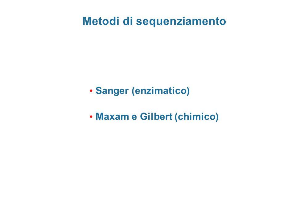 Confronto metodi di sequenziamento Sanger  rapida e semplice attuazione  disponibilità di kit  necessità di primer  sensibile a strutture secondarie Maxam e Gilbert  lunga preparazione del DNA  reazioni da mettere a punto  relativamente economico  strutture non influenti  utilizzabile per oligonucleotidi