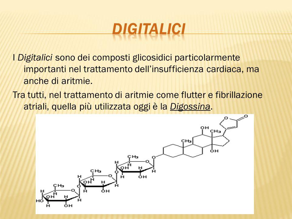 I Digitalici sono dei composti glicosidici particolarmente importanti nel trattamento dell'insufficienza cardiaca, ma anche di aritmie. Tra tutti, nel