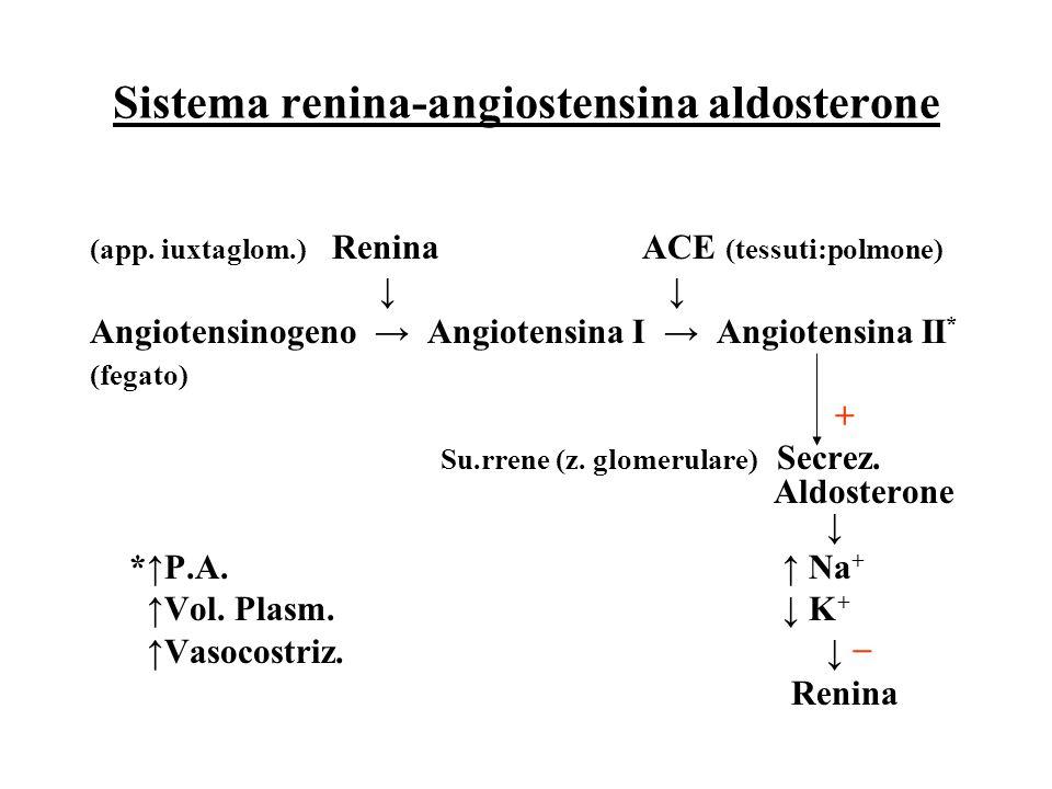 Azione dell'aldosterone sui tubuli renali